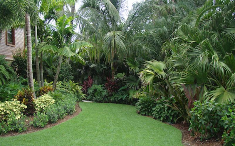 Landscape Designers North Fort Myers